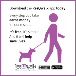 CCRT Proud New ResQwalk Member