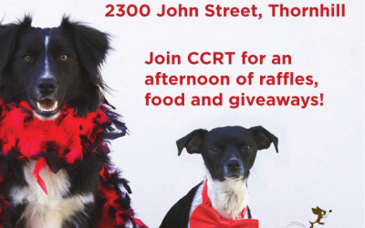 John Street Animal Hospital Open House – Markham, ON – August 19, 2017