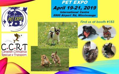 Pet Expo – April 19 – 21, 2019 Mississauga