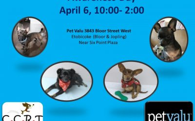 April 6 10am – 2pm Awareness Day – Bloor West