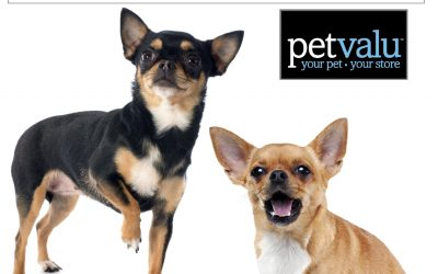Meet and Greet at Pet Valu, Waterdown ON – March 9, 2019