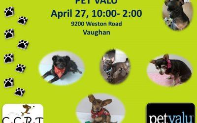 April 27, 2019 Vaughan Pet Valu