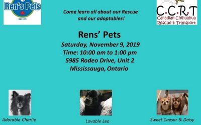 Ren's Pets Mississauga