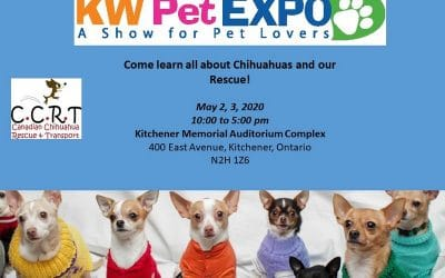 Kitchener Pet Expo : May 2nd and 3rd, 2020