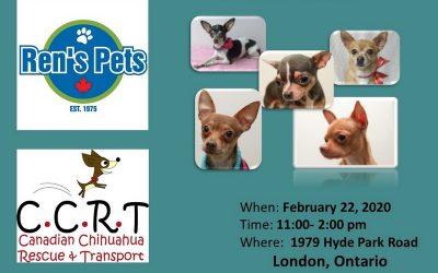 London February 22, 2020 11am – 2pm